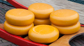 Stack of Dutch Cheeses Royalty Free Stock Images