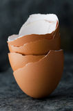 Stack of eggshells Stock Photography
