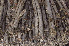 Stack of fire wood Stock Image