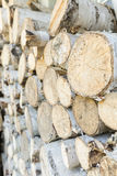 Stack of fire wood Stock Photos