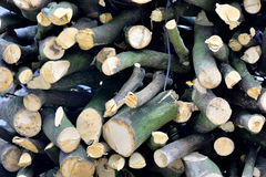Stack of firewood. As featured texture and pattern Royalty Free Stock Photography