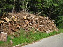 Stack of firewood. Autumn photo Royalty Free Stock Photography