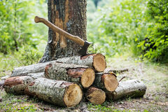 A stack of firewood and an ax in the forest. Man chopping wood in the forest Royalty Free Stock Photography
