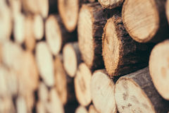 Stack of firewood Royalty Free Stock Photography