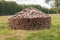 A Stack of Firewood in a Forest Glade Stock Photo
