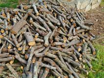 A stack of firewood of holm oaks Royalty Free Stock Images