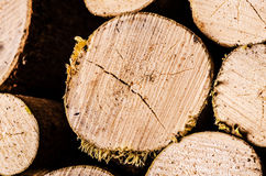 Stack of firewood. Indoors, nice round  logs Stock Photos