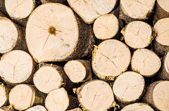 Stack of firewood. Indoors, nice round logs Royalty Free Stock Photos
