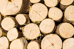 Stack of firewood. Indoors, nice round logs Stock Image