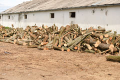 Stack of firewood near the wall of an old building Stock Image