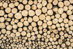 A stack of firewood texture Stock Images