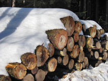 Stack of firewood under the snow Stock Image