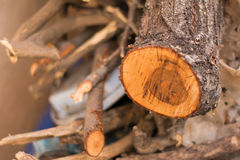 Stack of firewood Royalty Free Stock Photos