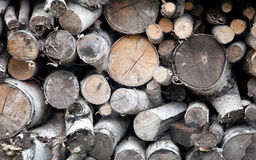 Stack of firewood for winter Royalty Free Stock Photos