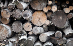 Stack of firewood for winter Royalty Free Stock Photo