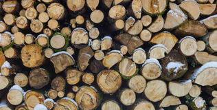 Stack of firewood in winter Stock Images