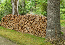 Stack of firewoods in beautiful botanic garden of Furnas Royalty Free Stock Photos