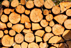 Stack of firewoods on the sun Royalty Free Stock Photography