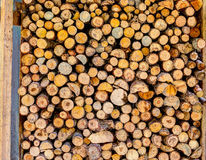 Stack of firewoods on the sun Royalty Free Stock Photo