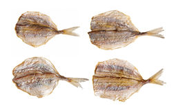 Stack of fish Stock Photography