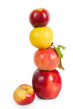 Stack of four apples, Royalty Free Stock Photo