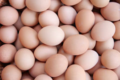 Stack of fresh egg Container box. Stock Photography