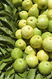Stack of Fresh Guavas at Farmers Market Stock Images