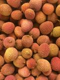 Stack of fresh lychee Royalty Free Stock Photo