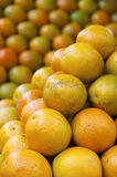Stack of Fresh Oranges at Farmers Market Royalty Free Stock Images