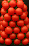 A Stack of Fresh Ripe Tomatoes. Intertwined with parsley stock photography