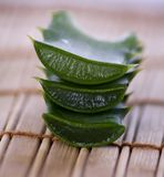 Stack of freshly sliced Aloe Vera Stock Photography