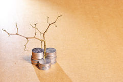Stack of golden coins and dead plant stock photo
