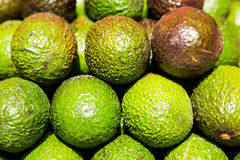 Stack of green and purple Avocado Royalty Free Stock Photos