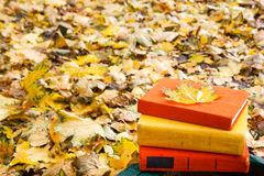 Stack of hardback book lying on a bench at sunset Stock Images