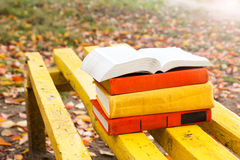 Stack of hardback book lying on a bench at sunset Stock Photos