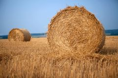 Stack of hay Royalty Free Stock Images