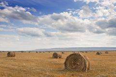 Stack of hay 2 Stock Photography