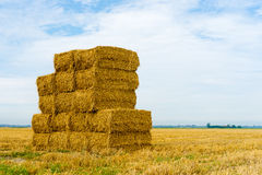 Stack of hay bales Stock Photo