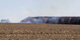 Stack hay in fire on field with blue sky Stock Photos