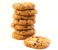 Stack of hazelnut cookies wtih cranberries Stock Images