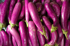 Stack of healthy eggplant Royalty Free Stock Images