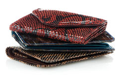 Stack of leather wallets Stock Image