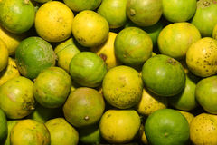 Stack of limes. On display at market Royalty Free Stock Photo