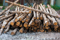 Stack log for sale. Saw mill Stock Photography