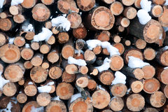 Stack of logs in winter Royalty Free Stock Photos