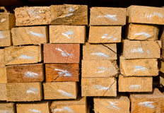 Stack of lumber in timber logs storage. Lumber stocking ready for sale in thailand Royalty Free Stock Photos