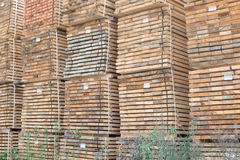 Stack of lumber wood in timber logs storage Stock Photography