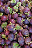 Stack of mangosteen Stock Photos