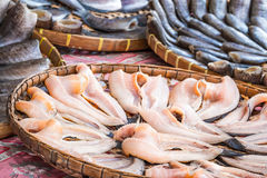 Stack of many Fillet Salty Dried Pla Salid on Basket. Stack of many Fillet Salty Dried Skin Fish Pla Salid or Sepat Siam - Local Fishes of Thailand on Basket at Royalty Free Stock Image