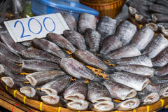 Stack of many Salty Dried Pla Salid on Basket. Stack of many Salty Dried Skin Fish Pla Salid or Sepat Siam - Local Fishes of Thailand on Basket at Traditional Stock Image